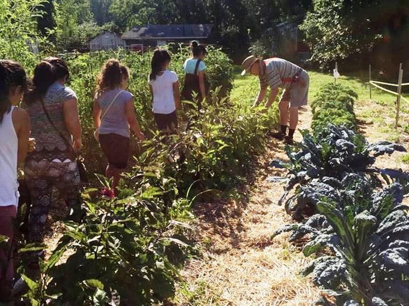 GrowLocal Lafayette Urban Gardens Network - SeedMoney
